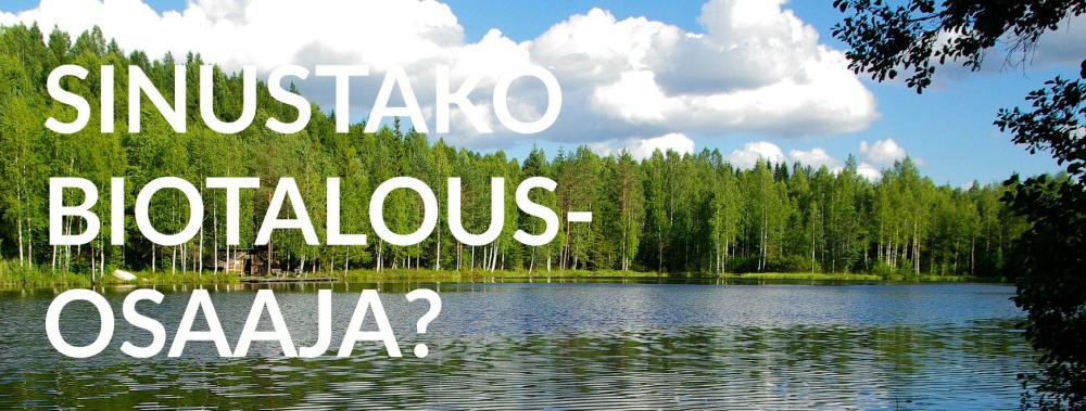 finland-teksti